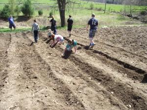 food-pantry-garden